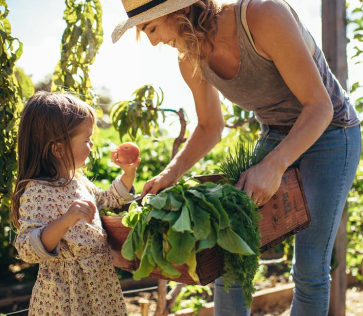 Nachhaltigkeit in der Küche – Tipps für umweltbewusstes Kochen und Essen