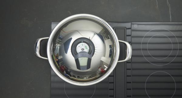 HotPan auf Herd stellen und auf höchste Stufe schalten. Audiotherm einschalten, auf Visiotherm aufsetzen und drehen bis das Brat-Symbol erscheint.