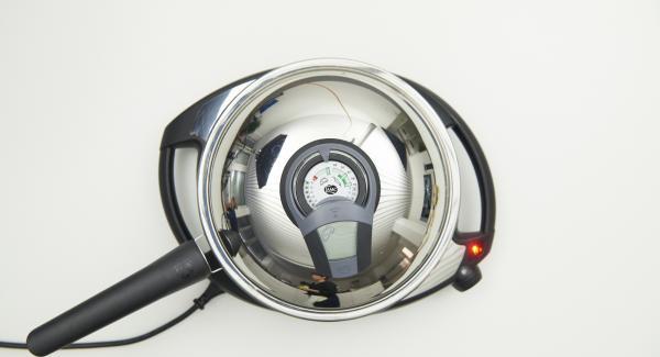 HotPan auf Navigenio stellen und diesen auf höchste Stufe schalten. Audiotherm einschalten, auf Visiotherm aufsetzen und drehen bis das Brat-Symbol erscheint.