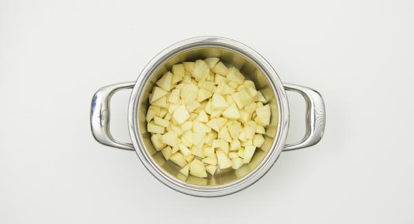 Äpfel tropfnass in den Topf geben, auf den Herd stellen und diesen auf höchste Stufe schalten. Audiotherm einschalten, ca. 10-15 Minuten Garzeit eingeben, auf Visiotherm auf setzen und drehen bis das Gemüse-Symbol erscheint.