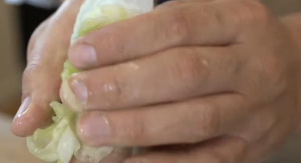 Das Wasser aus der Salatgurke drücken und zu dem griechischen Jogurt geben.