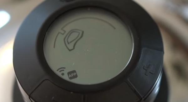 Den Audiotherm einschalten und auf das Fleischsymbol einstellen.